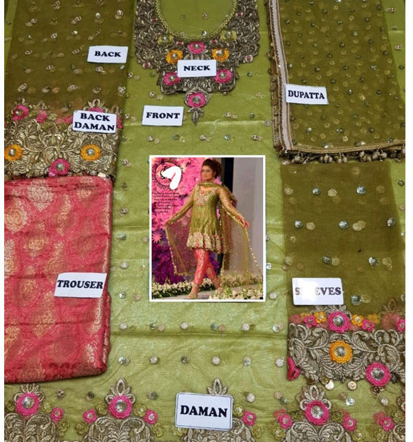 Bridal Net Embroidery Suit With Net Embroidery Dupatta (CHI-478) Gallery Image 1