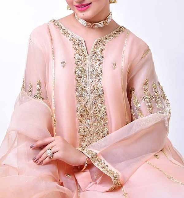 Handwork Embroidered Organza Party Dress with Inner (CHI-449)